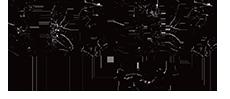 kasidis-logo